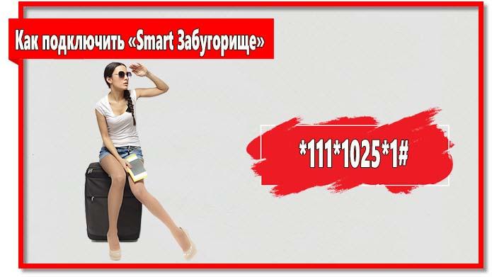Чтобы подключить «Смарт Забугорище» наберите на телефоне *111*1025*1#.